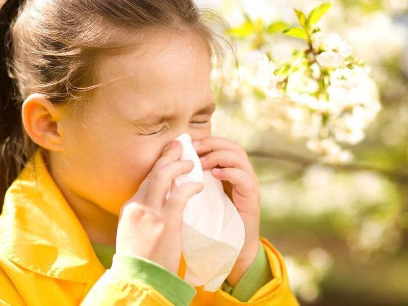 Tinh dầu tràm trị các bệnh liên quan đến đường hô hấp rất tốt